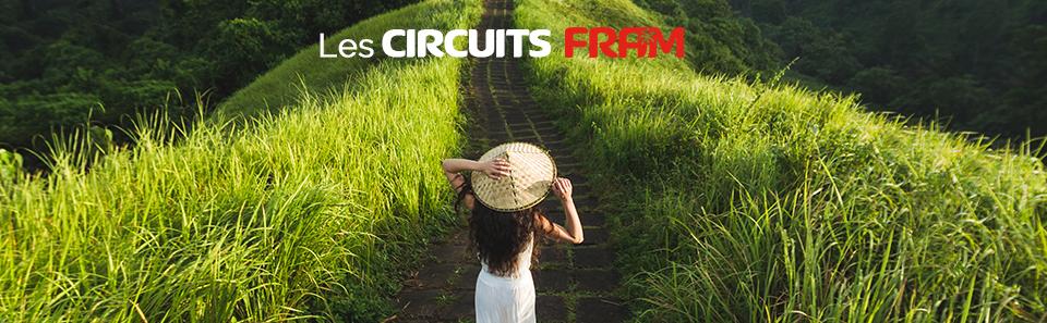 Les circuits FRAM