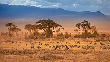 FRAM AFRIQUE DU SUD